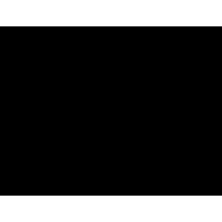 Übergangs-Leih-Spender